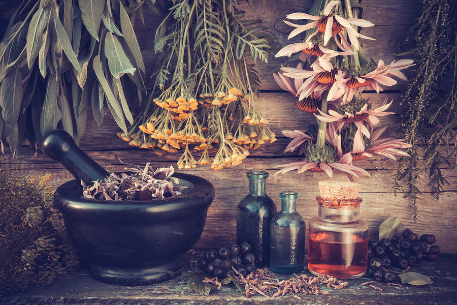 Herbs to Reduce Excess Heat