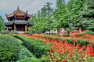 traditional-chinese-medicine-landscape